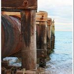 A Beach Walk: Finding Beauty in the Rust