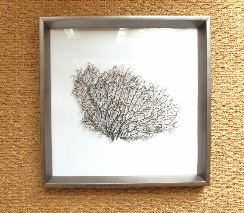 Sea Fan Art - Sand and Sisal