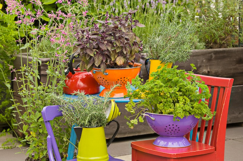 Creative Containers- Colander Planters