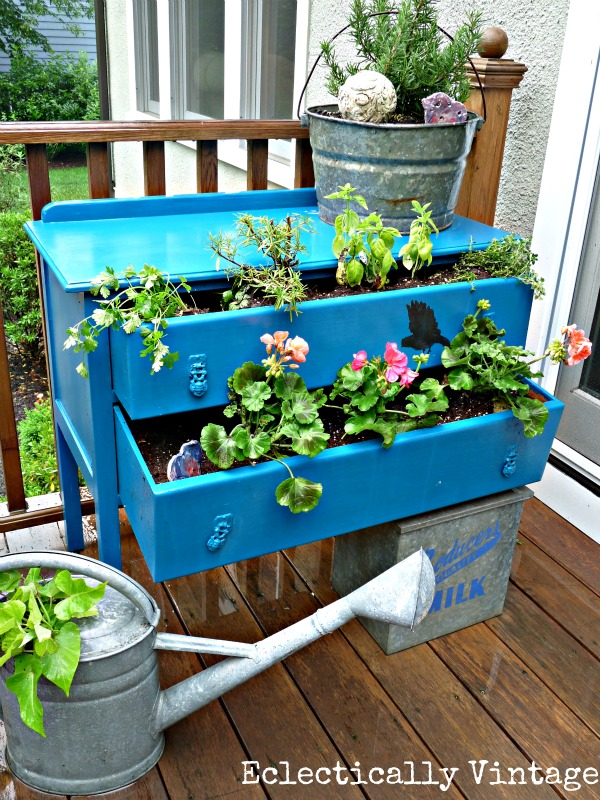 Creative Container Gardening Sand and Sisal