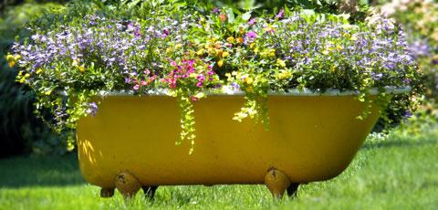 Creative container - bathtub garden