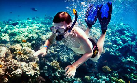 Island snorkel adventure