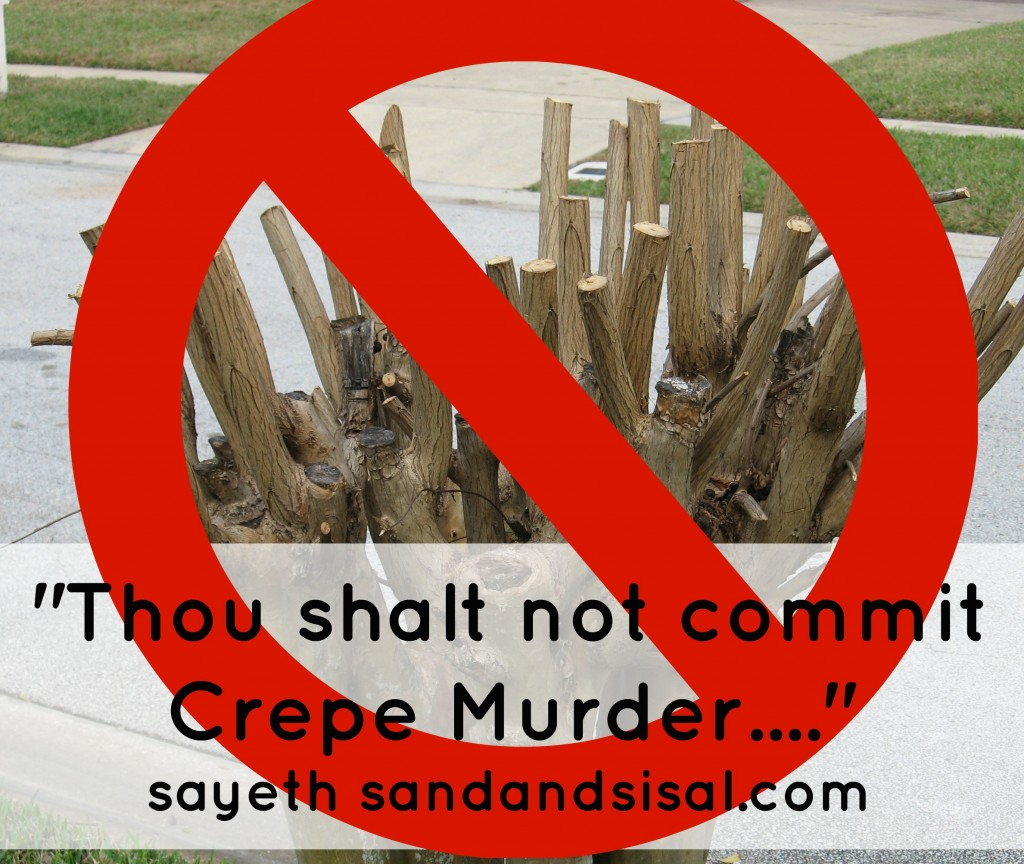 Thou Shalt Not Commit Crepe Murder