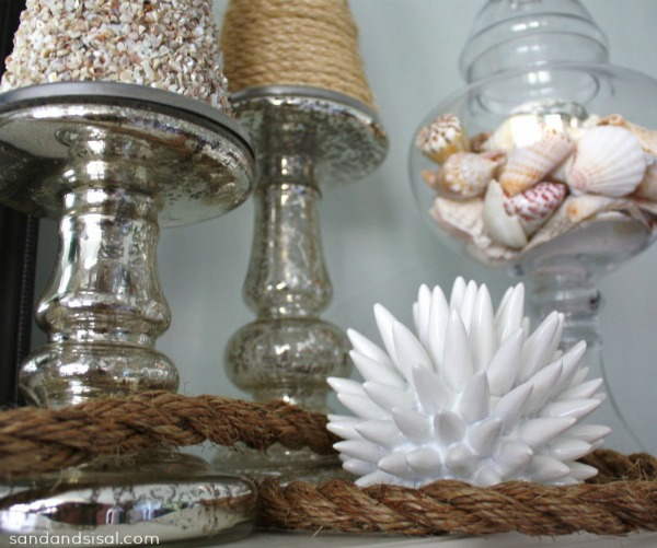 Sea Urchin - coastal mantel