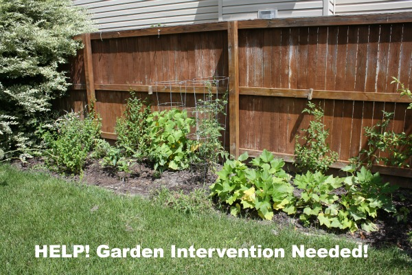 Garden Intervention