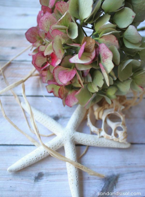 Dried hydrangeas and starfish