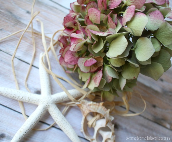 How to dry hydrangeas