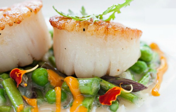 Macintosh Seared Scallops