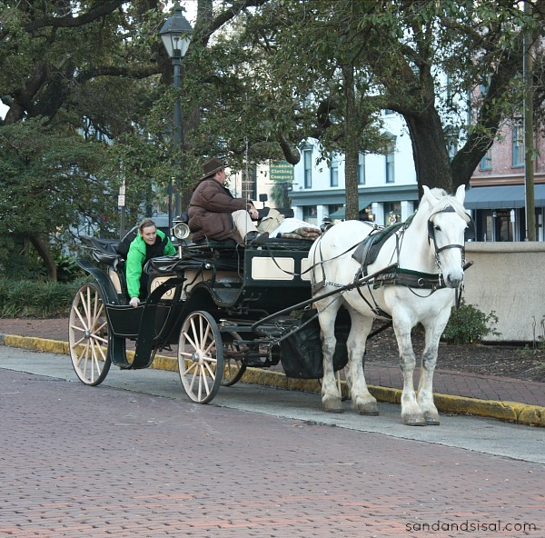 Carriage Ride - Savannah