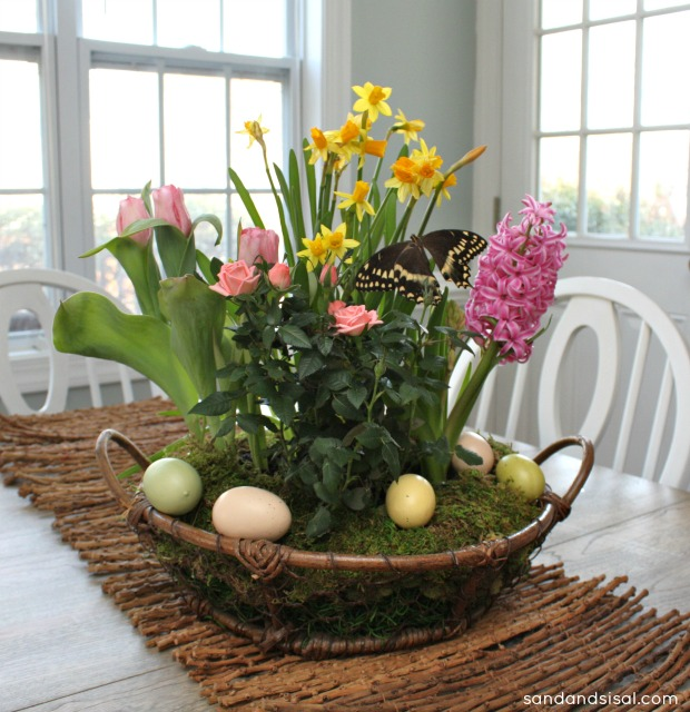 Spring Tabletop Garden Page 5 Of 8 Sand And Sisal