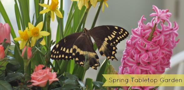 Spring Tabletop Garden slide