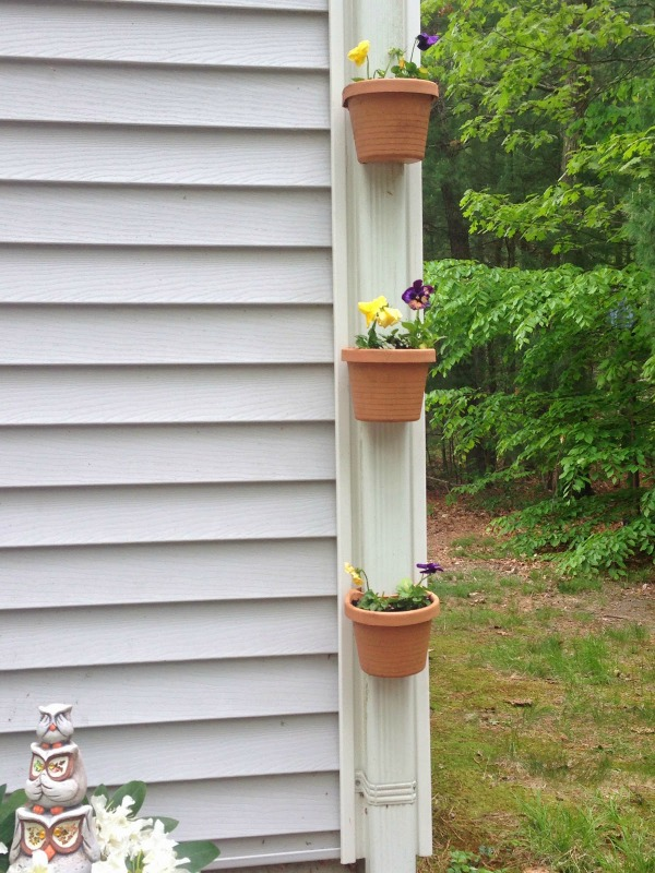 Decorate a Gutter Spout with planters