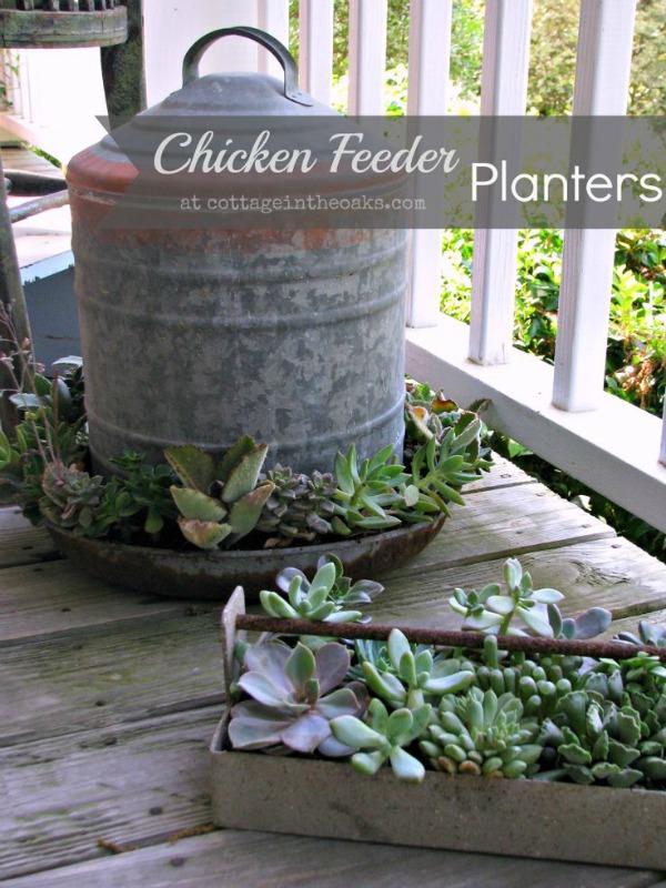 Unique Planters outside the pot