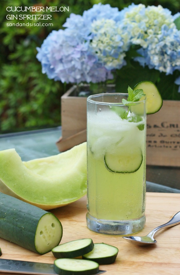 Cucumber Melon Gin Spritzer - Sand and Sisal