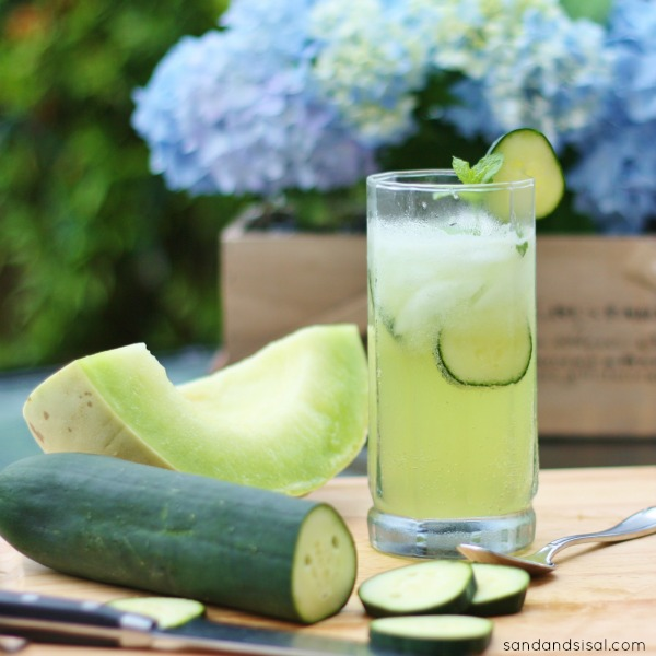 ... and lime spritzer cucumber lime spritzer cucumber mint spritzer recipe