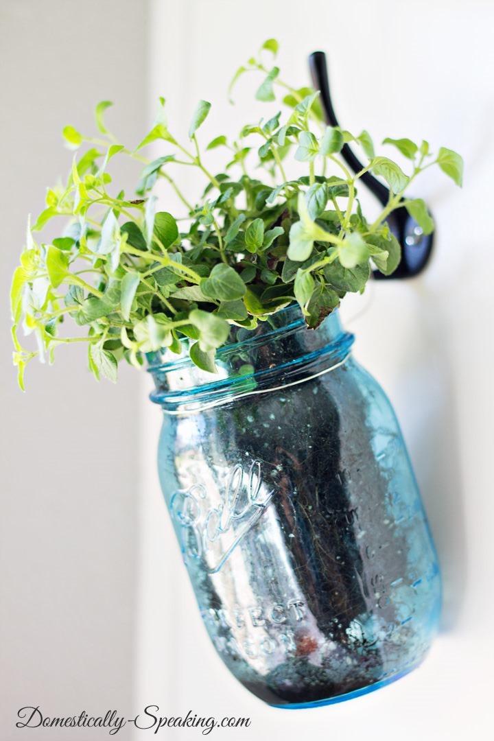 Hanging-Herb-Mason-Jars