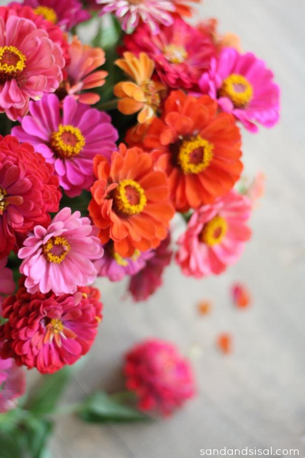 Zinnia Flower Arrangement