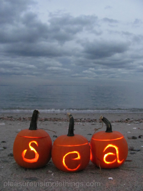 SEA Beach Pumpkin