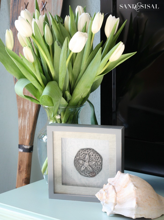 Sand Dollar Art + White Tulips