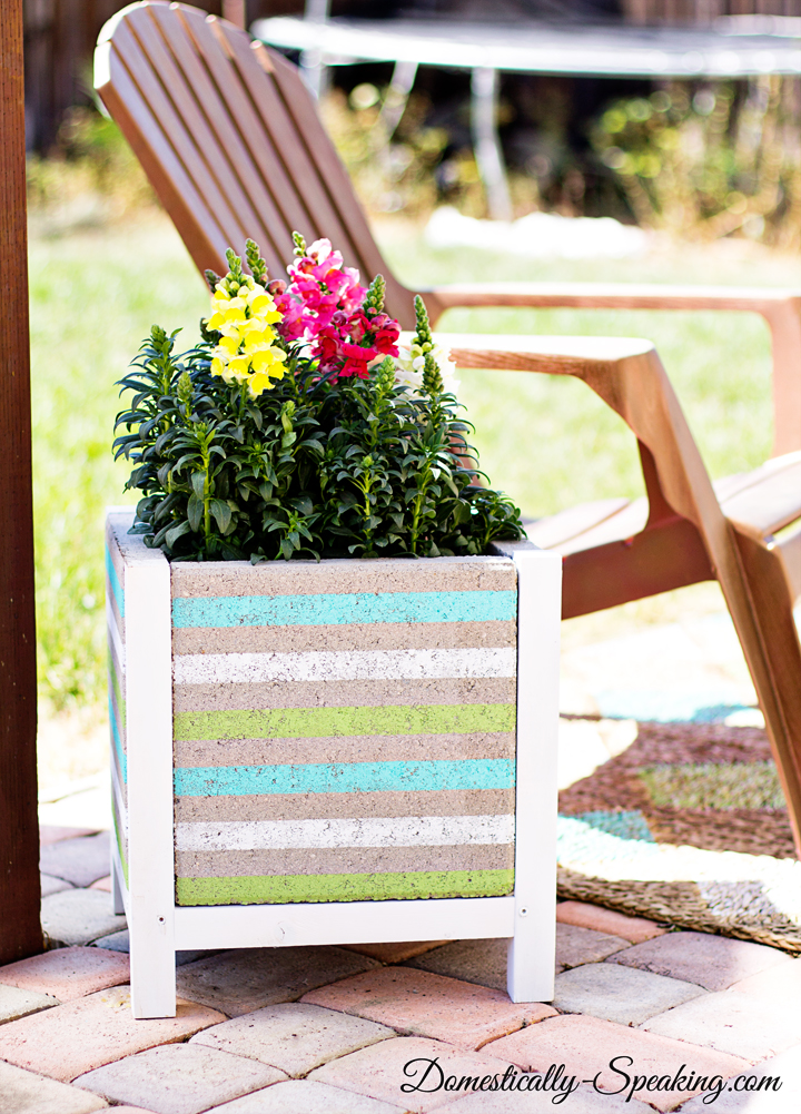 DIY-Paver-Planter-with-a-Beachy-Stripe