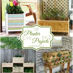 DIY Planter Projects