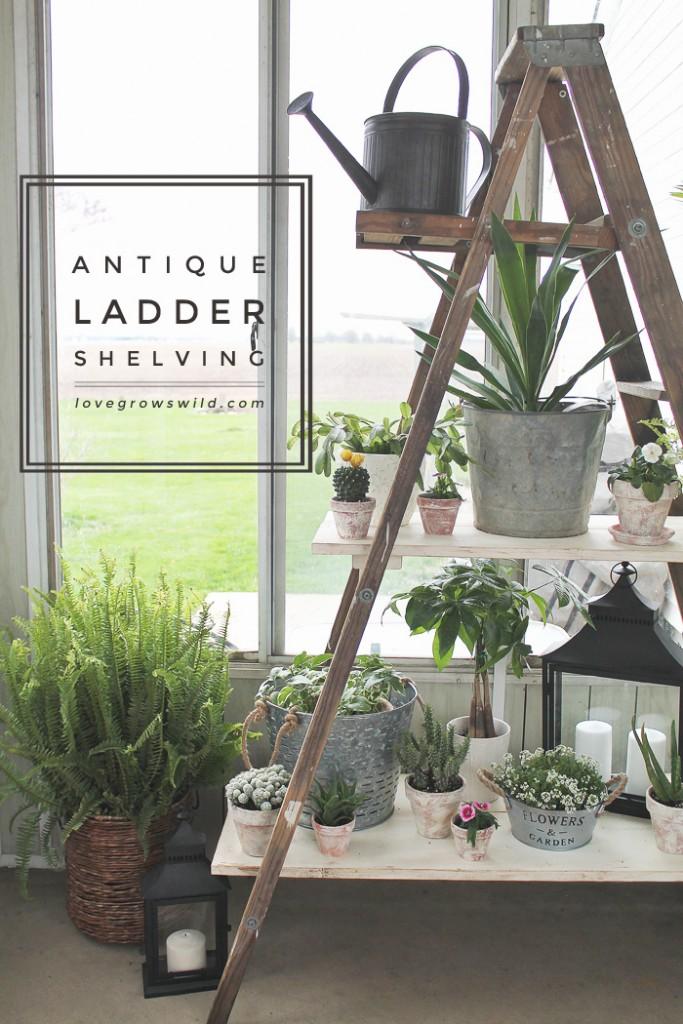 Antique-Ladder-Shelving