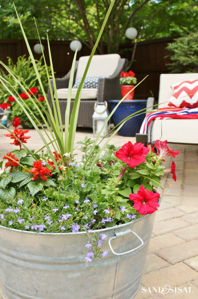 Red, White, and Blue Galvanized Pail Planter