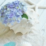 Hydrangea Arrangement Ideas