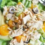 Tangy Tangerine Chicken Salad - 3