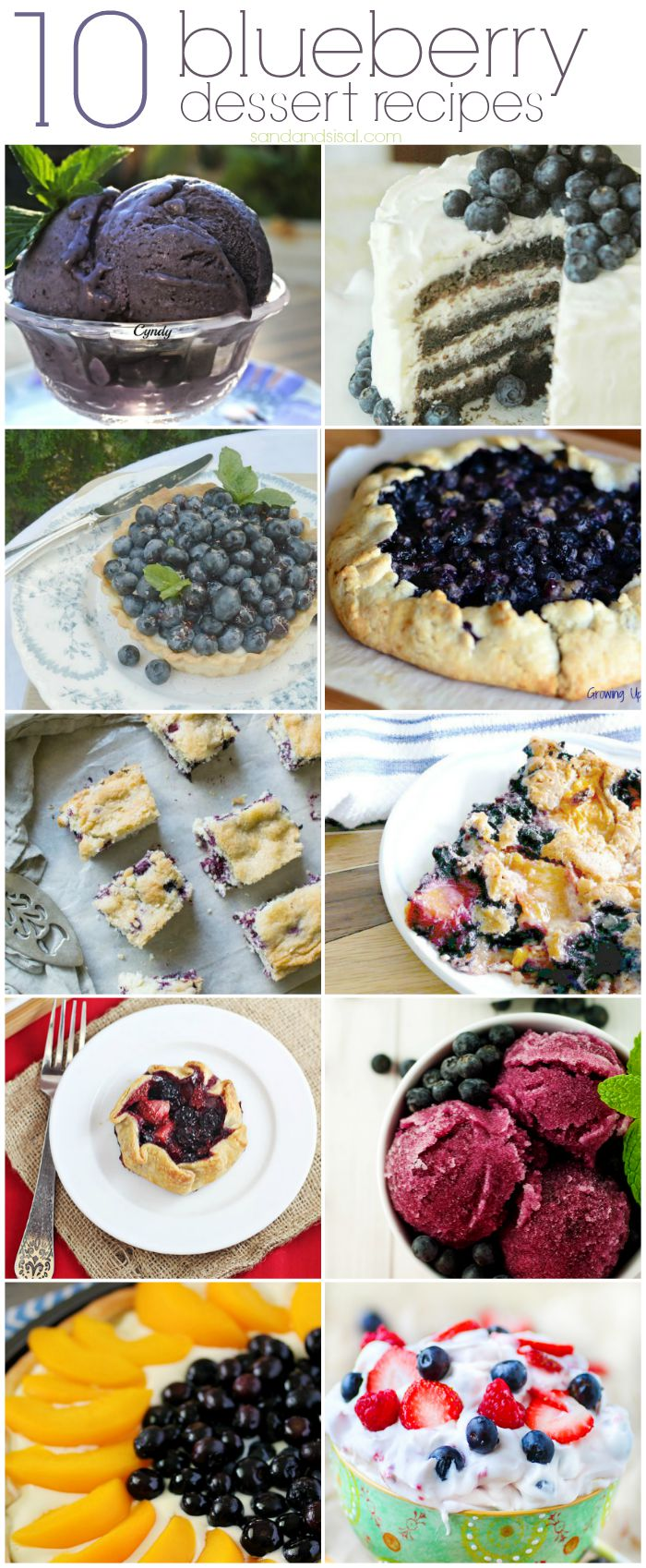 10 Blueberry Dessert Recipes