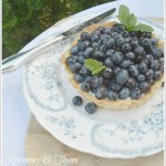 10 Blueberry Dessert Recipes