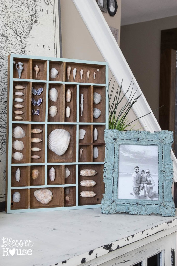 Seashell-Printer-Tray-Shadow-Box