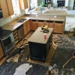 After the Flood -An Update