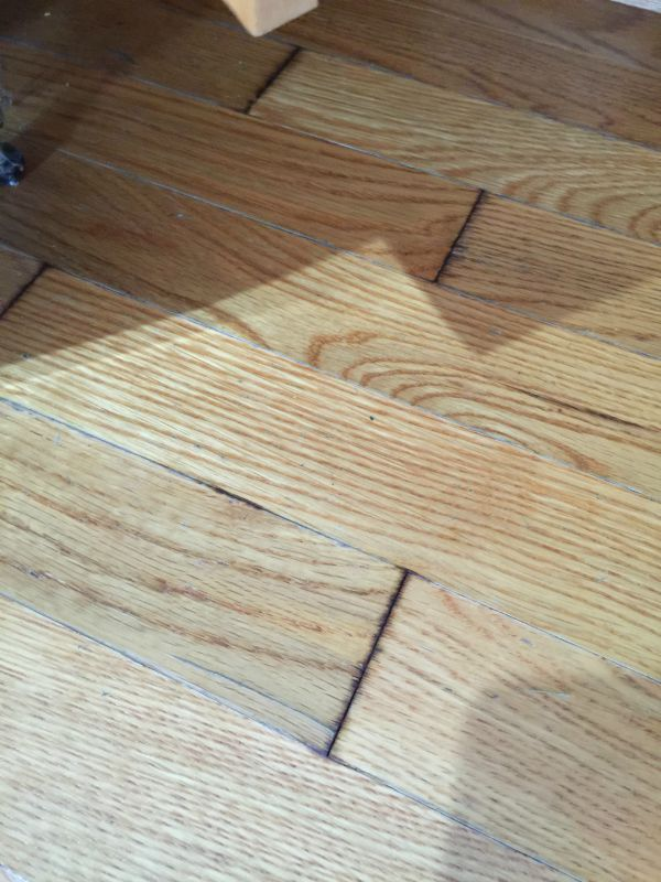wet hardwood floors starting to warp