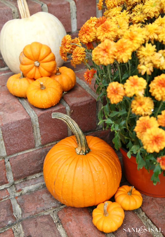Awash in Orange & White – Decorating a Front Porch for Fall