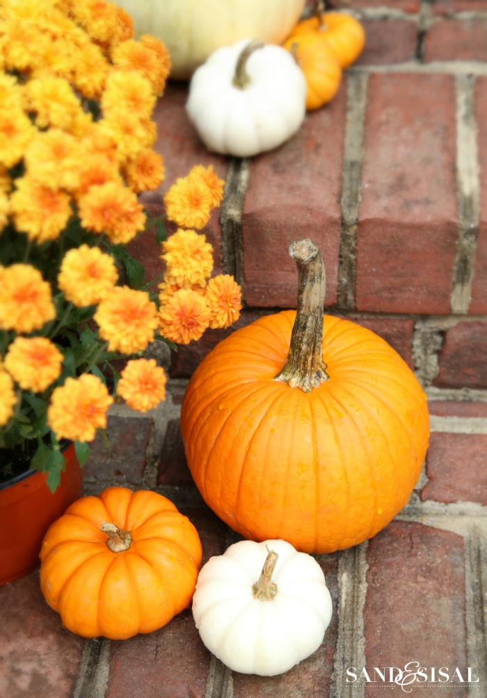 Simple fall decorating - Orange and white pumpkins and mums