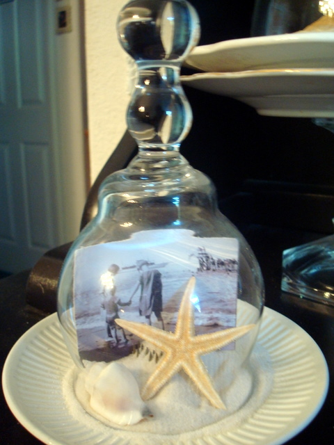 Coastal Cloche Ideas : Capture a bit of summer under a cloche or glass bell jar. Explore these beautifully chic coastal cloche decor ideas for your home.
