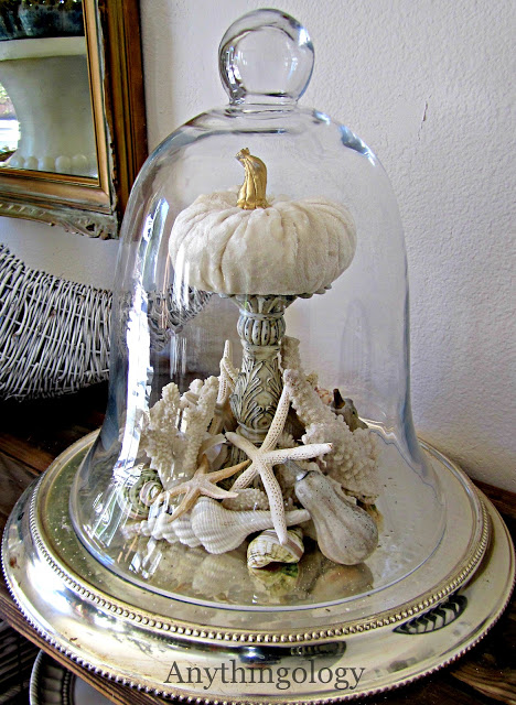 Coastal Fall decor under cloche: Capture a bit of summer under a cloche or glass bell jar. Explore these beautifully chic coastal cloche decor ideas for your home.