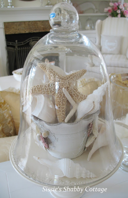 Shells and teacup under cloche: Capture a bit of summer under a cloche or glass bell jar. Explore these beautifully chic coastal cloche decor ideas for your home.