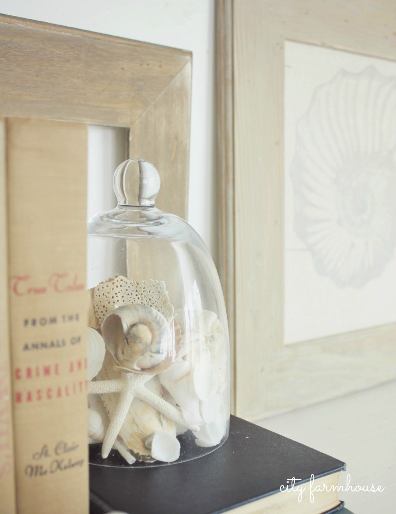 Shells in cloche: Capture a bit of summer under a cloche or glass bell jar. Explore these beautifully chic coastal cloche decor ideas for your home.