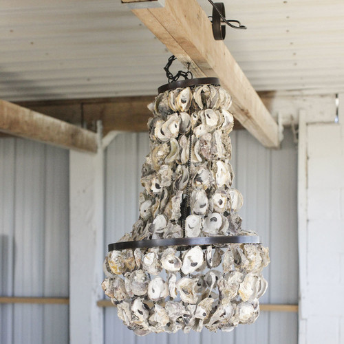 Oyster Shell Chandelier -Coastal Chandeliers and Pendants