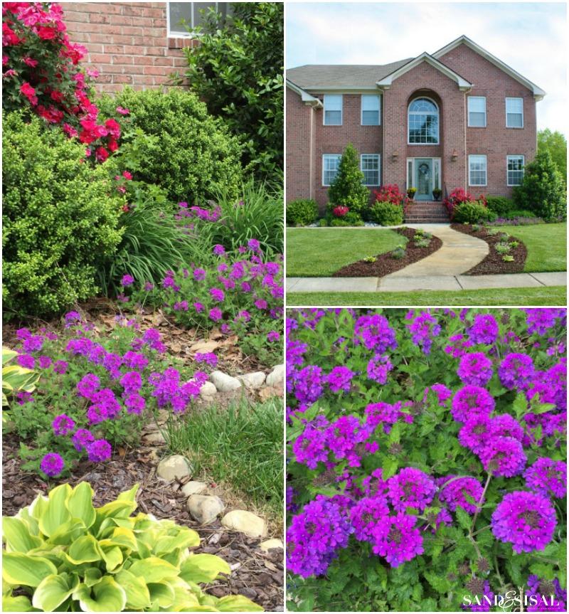 Summer Garden Plans
