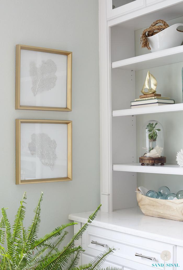DIY Framed Sea Fans - Adding Coastal Glam to Any Room