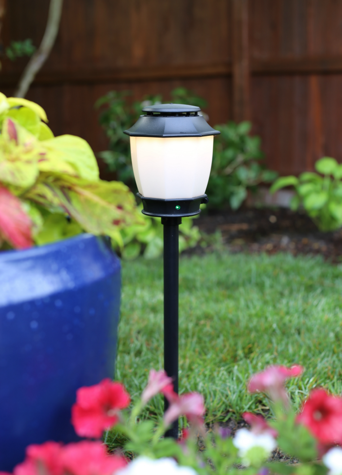 foto de Patio Makeover + Mosquito Repellent Outdoor Lighting System