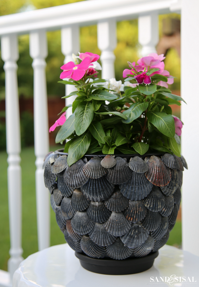 DIY Shell Planter - Coastal Planter - Shell Craft