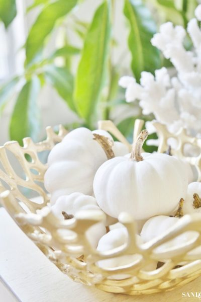 Coastal White Pumpkin Fall Decor