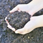 fall-soil-preparation-for-spring-gardens