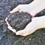 Fall Soil Preparation Tips for Spring Gardens