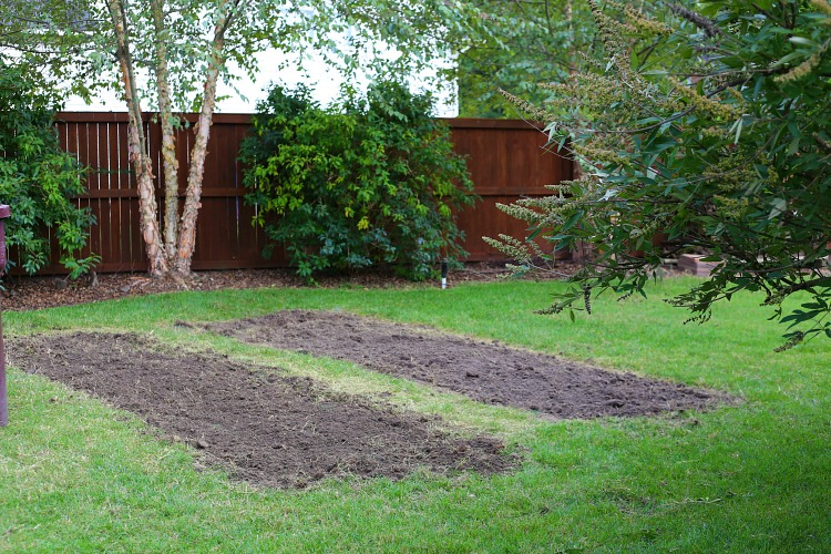 fall-soil-preparation-for-spring-gardens-tips