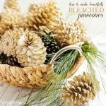 How to Make Beautifully Bleached Pinecones